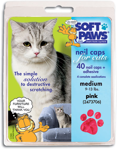 how to put soft paws on a cat