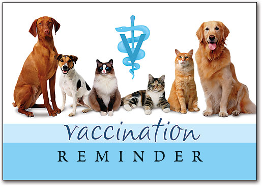 Vaccination Reminder Postcards And Laser Cards