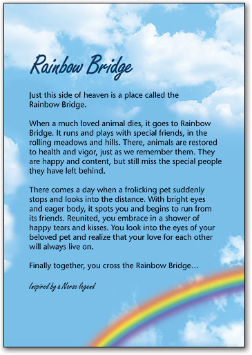 graphic about Rainbow Bridge Poem for Dogs Printable identified as Rainbow Bridge Postcard Incorporate SmartPractice Veterinary
