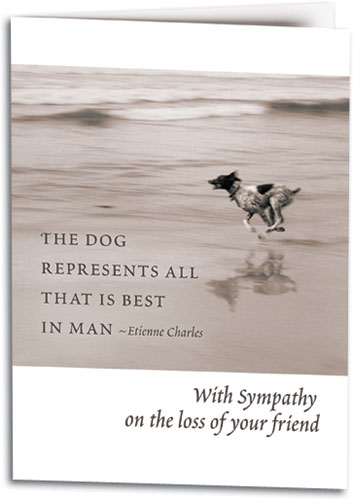 dog themed sympathy cards smartpractice veterinary