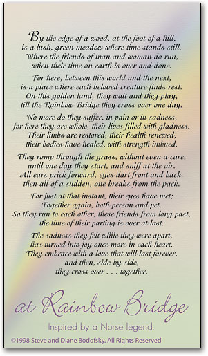 picture about Poem Rainbow Bridge Printable known as Rainbow Bridge Sympathy Playing cards SmartPractice Veterinary