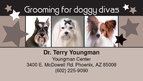 Groomer business cards at everyday low prices smartpractice veterinary doggy divas business card colourmoves