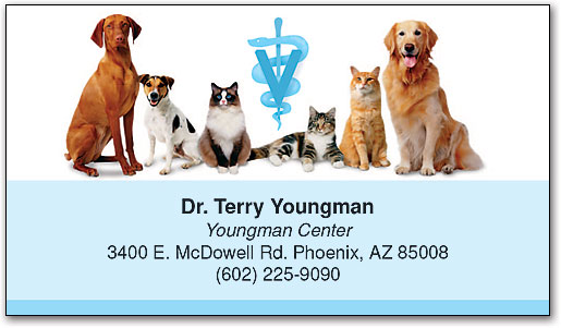 Veterinary business cards smartpractice veterinary vaccination reminder business card colourmoves