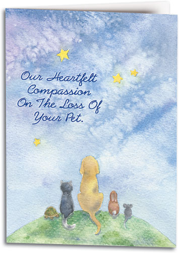 Loss Of Pet >> Sympathy Cards Show Compassion For The Loss Of A Pet Smartpractice