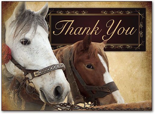 Image result for thank you horse