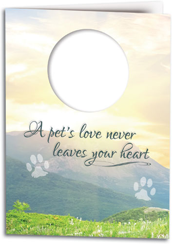 Sympathy cards show compassion for the loss of a pet smartpractice meadow of memories folding card altavistaventures Choice Image