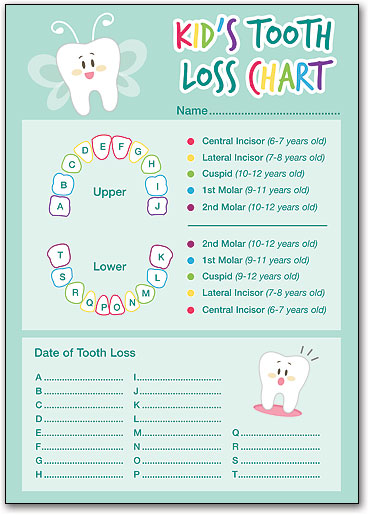 Dog Dental Hygiene Demo Puppet Smartpractice Dental