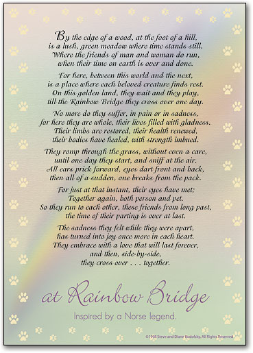 Rainbow Bridge Sympathy Cards Smartpractice Veterinary