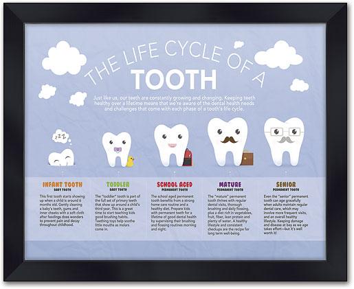 Genial Smile Evolution Wall Art