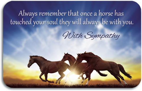 Equine Themed Sympathy And Reminder Cards Smartpractice Veterinary