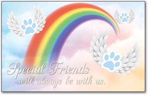 rainbow bridge sympathy cards