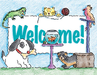 Veterinary Welcome Cards